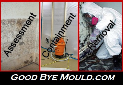 UNMARKED VEHICLES – Mould Remediation